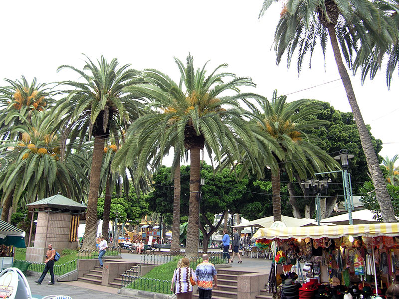 Archivo:Place in Puerto de la Cruz.jpg
